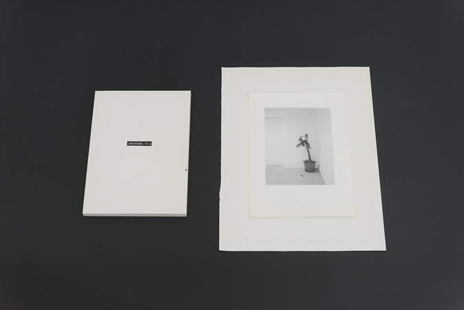 "Sophie Jodoin, TOI ET MOI fin, 2015, collage et album accordéon / collage and accordion album, 20 x 14 x .8 cm / 7.75 x 5.5 x 5/16"" et hallway (London), impression laser sur pages de livres / laser print on book pages, 2015, 30 x 22.2 cm / 11.75 x 8.75"". Photo Paul Litherland"